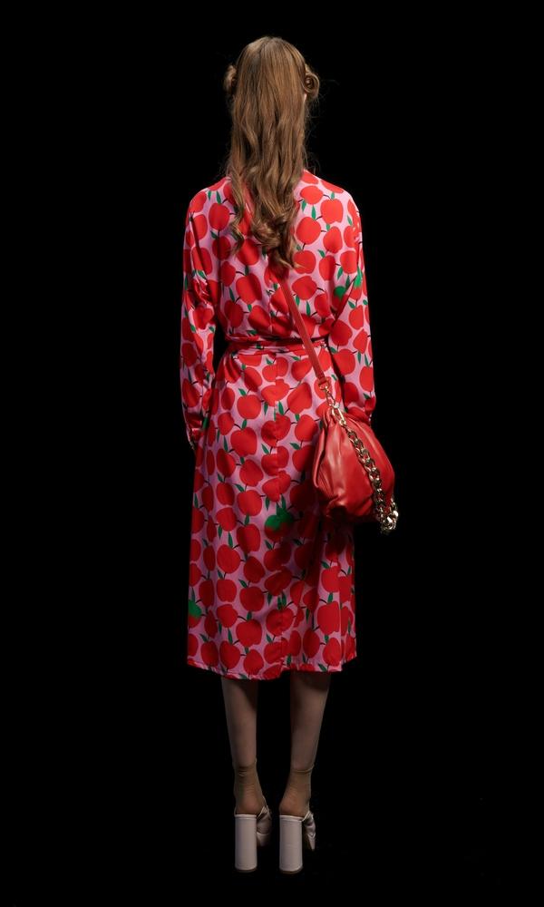 Γυναικεία Ρούχα WE ARE APPLES DRESS